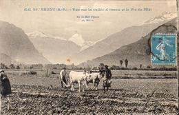 D64  ARUDY  Vue Sur La Vallée D'Ossau Et Le Pic Du Midi  .......Attelage Au Labour - Charrue Ancienne - Arudy