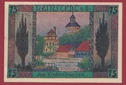 Allemagne 1 Notgeld De 75 Pfenning Stadt Neinstedt (RARE) UNC N °4525 - Collections