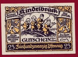 Allemagne 1 Notgeld De 25 Pfenning Stadt Rindelbrück (RARE) Dans L 'état N °4542 - Verzamelingen