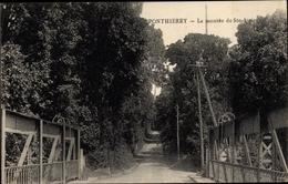 Cp Ponthierry Seine Et Marne, La Montee De Ste Assise - France