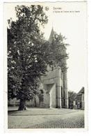 Sint-Renelde - Saintes - Tubeke - Eglise Et L'arbre De La Liberté - Edit. Maison Vandevelde - Tubize