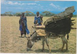POSTKAART TANZANIA - SERENGETI - Tanzanie