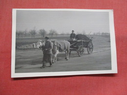 RPPC  Man With Ox Cart  -  Ref    3554 - Cartoline