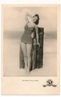 ESTHER WILLIAMS  Vintage Old Postcard - Acteurs