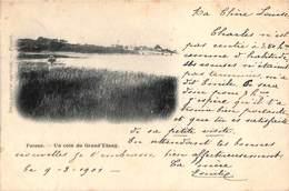 Fosses - Un Coin Du Grand Etang (1901, Imprimerie Agricole) - Fosses-la-Ville