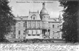 Brasschaet Hof - Chateau Kasteel Brasschaat (J. Van Wesenbeeck 1905) - Brasschaat