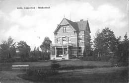 Cappellen - Berkenhof (F. Hoelen) - Kapellen