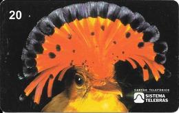 CARTE-MAGNETIQUE-BRESIL-07/98-OISEAU MOUCHEAVES DO BRASIL/MOUCHEROLLE ROYALE-TBE-TBE - Passereaux