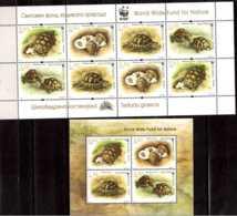 2016 Bulgaria - WWF Maurische Landschildkröte / Land Turtle Sheetlet + MS - Paper - MNH** Zz17 MI 5275As/78AS + B 421 - Bulgarien