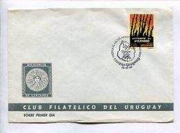 EVITEMOS EL INCENDIO. PROTECCION DEL MEDIO AMBIENTE DEL INCENDIO. URUGUAY 1990 ENVELOPE FDC FIRST DAY OF ISSUE -LILHU - Milieubescherming & Klimaat