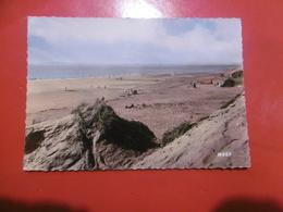 D 62 - Sainte Cecile Plage - Dunes Et Plage - Autres Communes