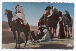 Algérie --1954--Scènes Et Types --Dans Les Dunes ((caravane De Chameaux,animée)  Beau Plan - Algérie
