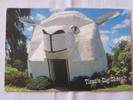 New Zealand Around 2018 Postcard To Nicaragua - Tirau's Big Sheep - New Zealand