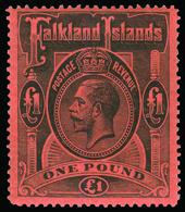 * Falkland Islands - Lot No.576 - Falkland Islands