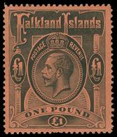 ** Falkland Islands - Lot No.577 - Falkland Islands
