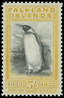 ** Falkland Islands - Lot No.580 - Falkland Islands