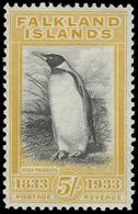 ** Falkland Islands - Lot No.581 - Falkland Islands