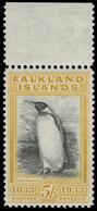 ** Falkland Islands - Lot No.582 - Falkland Islands