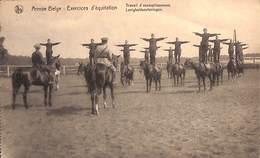 Armée Belge - Exercices D'équitation - Assouplissement (top Animation) - Brasschaat