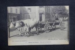 FRANCE - Carte Postale - Bains Les Bains - Place De La Madeleine - Attelage Gros Plan - L 39367 - Bains Les Bains