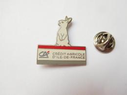 Beau Pin's En EGF , Banque Crédit Agricole D'Ile De France , Lapin , Rabbit - Banques