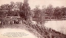 INGRANDES  ( 49 ) - Vignobles De La Bouvraie, GRANDIN - Frankrijk