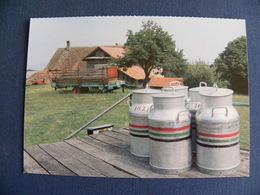 Agriculture: Ferme ) En Platet, Concise  District De Grandson - Bauernhöfe