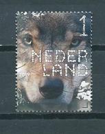 2019 Netherlands Animals,wolf Used/gebruikt/oblitere - Periode 2013-... (Willem-Alexander)