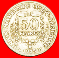 + FRANCE GOLD FISH AND CACAO PODS: WEST AFRICAN STATES ★ 50 FRANCS 1975! LOW START ★ NO RESERVE! - Munten