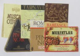Roumanie - Lot De 6 étiquettes De Vins / Alcools Roumains - Colecciones & Series