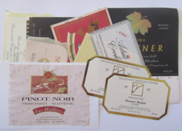 Slovénie - Lot De 11 étiquettes De Vins / Alcools Slovènes - Colecciones & Series