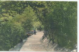 Schaarbeek - Schaerbeek - Vallée Josaphat - L'ancien Chemin - L. Lagaert, Bruxelles No 156 - Schaarbeek - Schaerbeek
