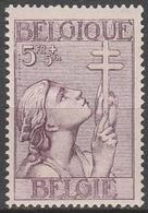 Belgie    .    OBP      .     383   (2 Scans)        .      **       .   Postfris    .  / .  Neuf Sans  Charniere - Belgique