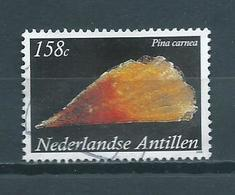 2008 Netherlands Antilles 158 Cent,shell,Pina Carnea Used/gebruikt/oblitere - Curaçao, Nederlandse Antillen, Aruba