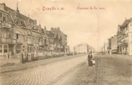 Coxyde - Edit. Marcovici N° 17 - Avenue De La Mer - Koksijde