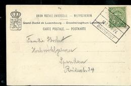 Carte- Vue De Wasserbillig  Obl. Ambulant: Luxembourg - Trier 12/07/1913 - Luxembourg