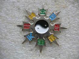 Pin's Du Yin Et Yang. Philosophie Chinoise, Le Yin Et Le Yang Sont Deux Catégories Complémentaires De La Vie Et Du Cosmo - Villes