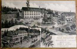 Hôtel-Pension Villa Hortensia Grand Mont Sur Lausanne - VD Vaud