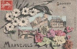 48 - MARVEJOLS - Souvenir De Marvejols - Marvejols