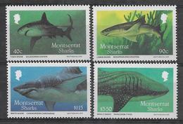 Montserrat Neufs Sans Charniére, Legère Tache, MINT NEVER HINGED, TINY SPOT,  SHARKS - Montserrat
