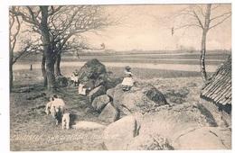 HUN-14  ZUIDLAREN / MIDLAREN  : With Hunnebed ( Dolmen , Menhirs) - Dolmen & Menhire