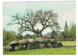 HUN-16  ROLDE  : With Hunnebed ( Dolmen , Menhirs) - Dolmen & Menhire