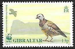 GIBRALTAR - MNH - 1991 -    Barbary Partridge    Alectoris Barbara - Hühnervögel & Fasanen