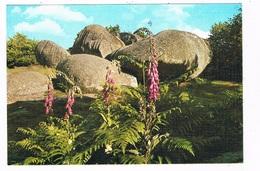 HUN-17  MONT BARLOT  :  Dolmen , Menhirs - Dolmen & Menhire