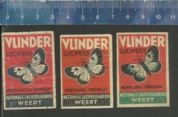 BUTTERFLIES PAPILLONS VLINDERS SCHMETTERLINGE MARIPOSAS VLINDER PAPILLON DUTCH Matchbox Labels - Boites D'allumettes - Etiquettes