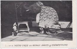 SOUVENIR DU THEATRE CIRQUE DES ANIMAUX SAVANTS ET CINEMATOGRAPHE - Cirque