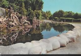 CAMPANIA - CASERTA - PARCO REALE - BAGNO DI DIANA E ATTEONE - VIAGGIATA 1962 - Caserta