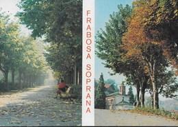 PIEMONTE - FRABOSA SOPRANA  - IL VIALE - VIAGGIATA 1973 - Italia