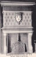 CHATEAU DE BLOIS LE MUSEE CHEMINEE DE LA CHAMBRE DE LOUIS XII NON VIAGGIATA - Blois