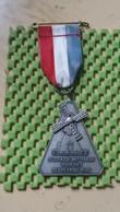 Medaille :Netherlands  - Dudok De Wit Tocht Voor Het Gebrekkige Kind - Walking Association - Nederland